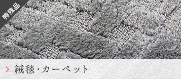 特殊品 絨毯・カーペット